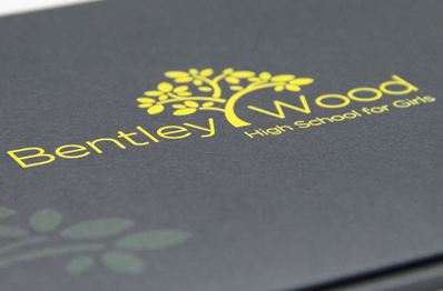 Bentley Wood Girls unique branding bespoke graphic design