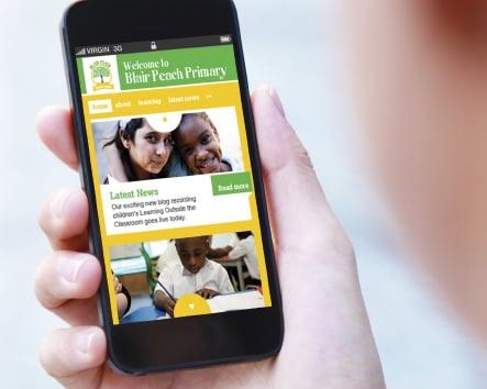 Blair Peach Primary School custom design website design