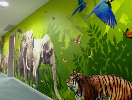 primary Schools nature inspired large format corridor wall art