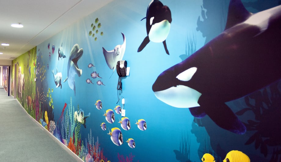 Harlyn School colourful underwater themed corridor wall art