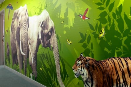 Harlyn Primary School multiple themed corridor wall art