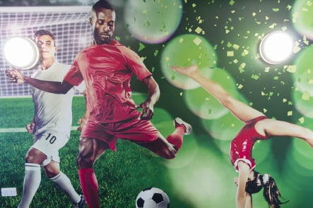 Roebuck Primary School Sports themed large format wall art
