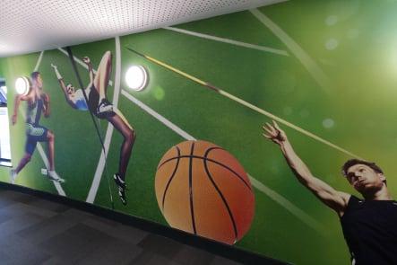 Roebuck Primary Sports themed school corridor wall art