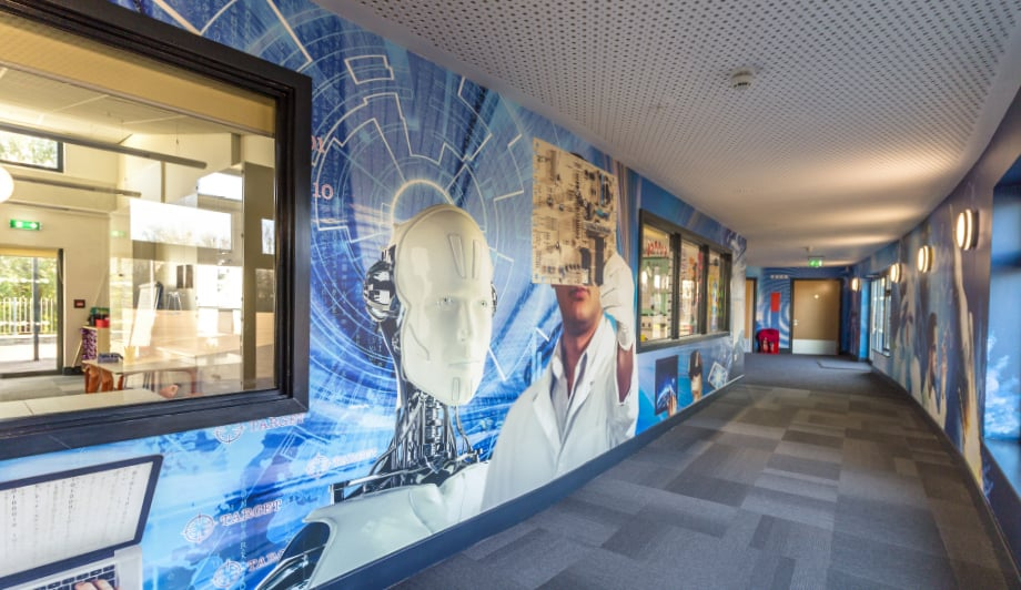 Roebuck Primary School Science continuous wrapped design wall art