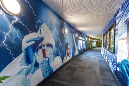 Roebuck Primary Science themed large format corridor wall art