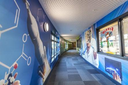Roebuck School Science large corridor wrap wall art