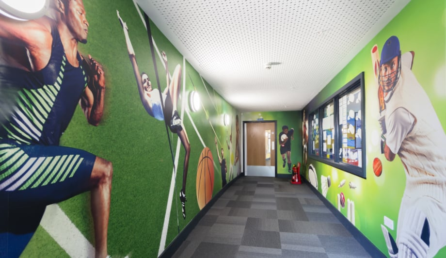 Roebuck Primary School and Nursery sports corridor wall art