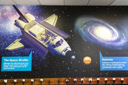 Schools bespoke science themed large format corridor wall art