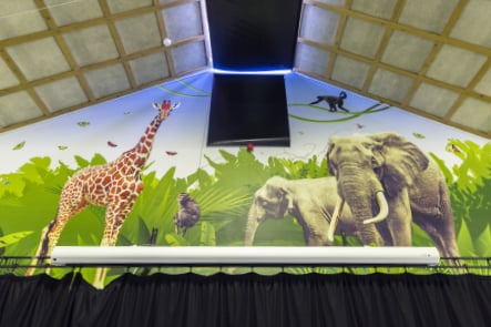 Bespoke animal themed large format school hall wall art