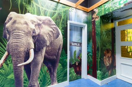 Mottingham Primary immersive jungle themed wrap around Wall Art