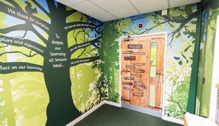 Senacre Primary School Vinyl Covered door bespoke wall art