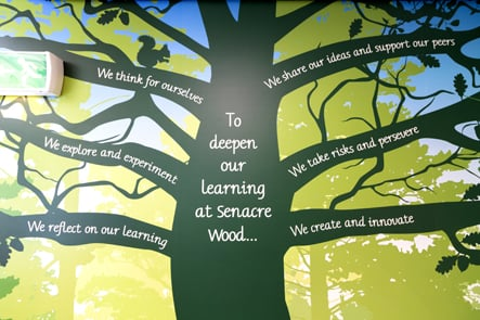 Senacre Wood Primary School woodland themed reception wall art