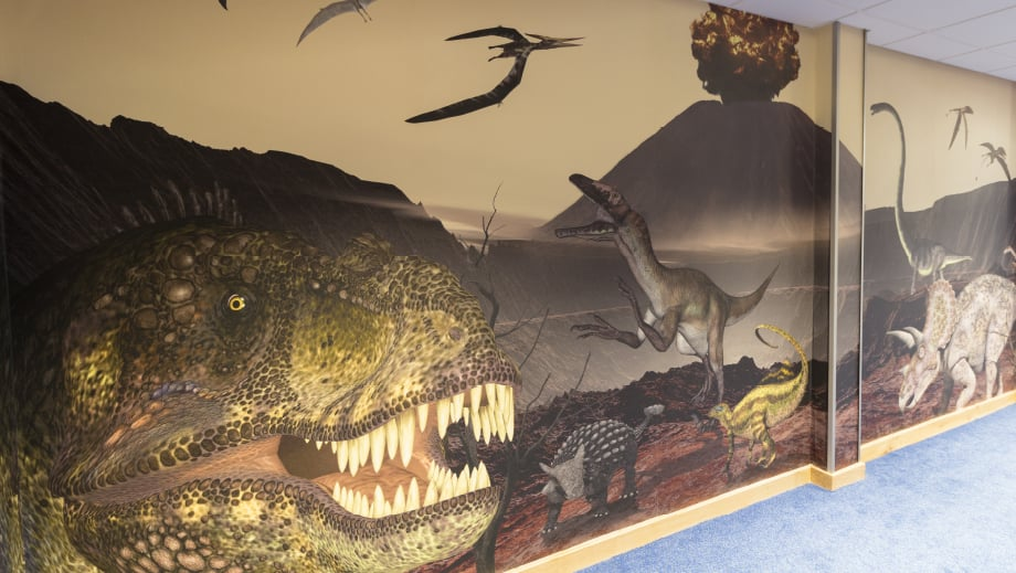Lee Chapel School bespoke dinosaur large format corridor wall art