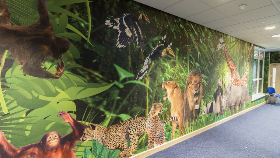 jungle themed school corridor wall art