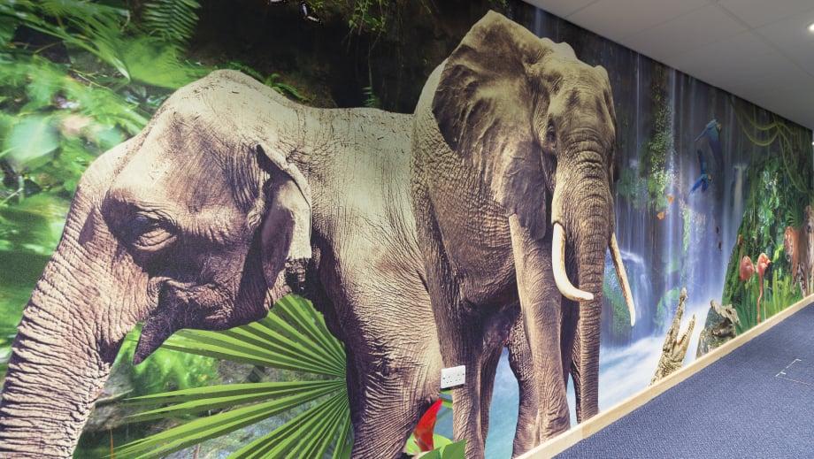 Lee Chapel School bespoke jungle themed immersive corridor wall art