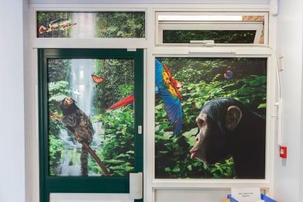 Close up of Schools bespoke immersive window vinyl wall art