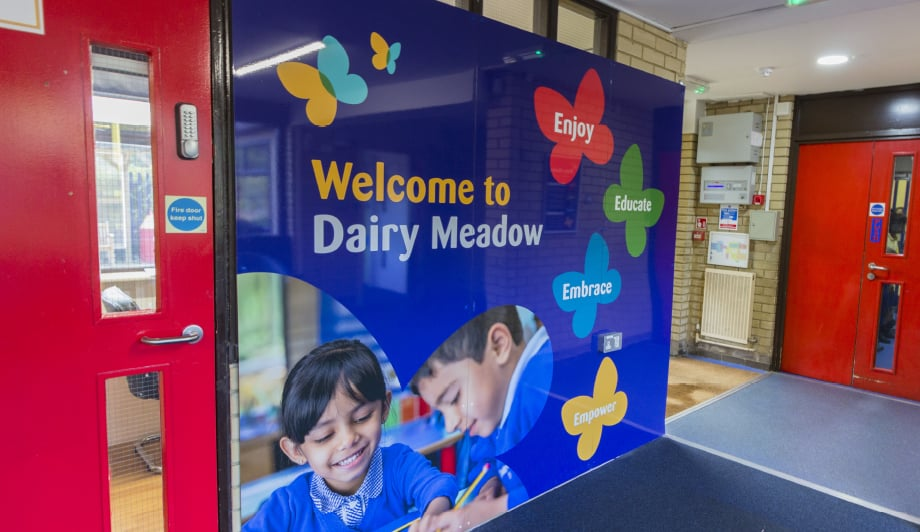 Dairy Meadow School pupil photography for custom entrance Wall Art