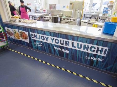 Bower Grove Schools bespoke canteen feature wall art