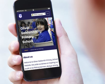 Bespoke school responsive website design