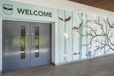 Westbrook Primary nature inspired class name welcome walls