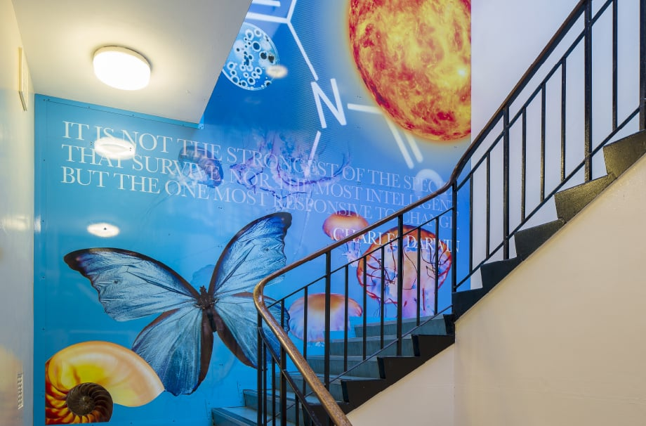 Finchley Catholic High School bespoke science themed stairwell wall art
