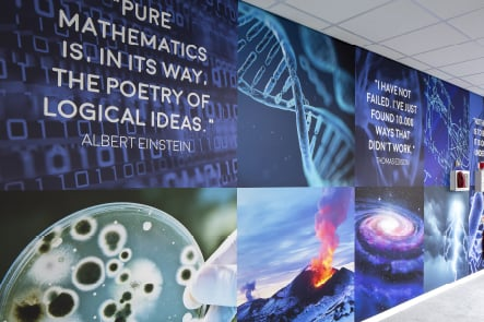 Brampton sixth form science theme feature wall art