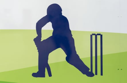 St Edwards cricket graphic from sports hall wall art