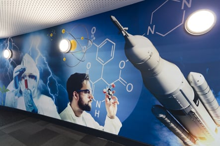 Roebuck primary school & nursery, science themed corridor wall art