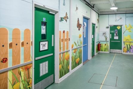 School bespoke corridor mini beasts nature wall art design