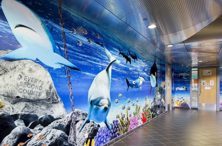 Torquay Academy Devon underwater themed bespoke corridor wall art