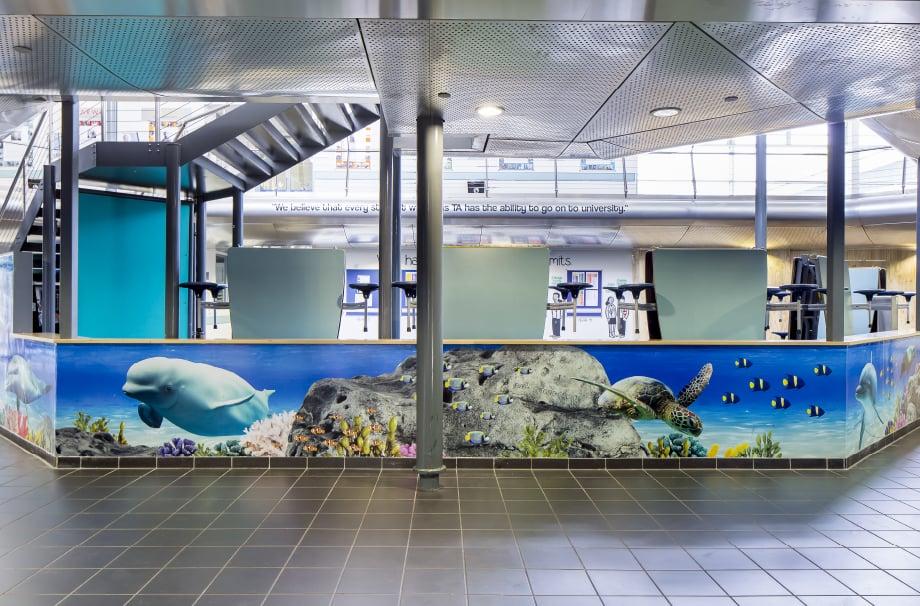 Torquay Academy underwater theme reception bespoke wall art