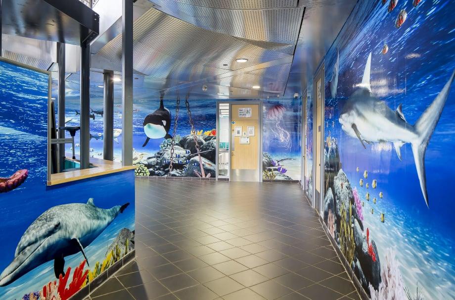 Torquay Academy aquatic themed large format immersive wall art
