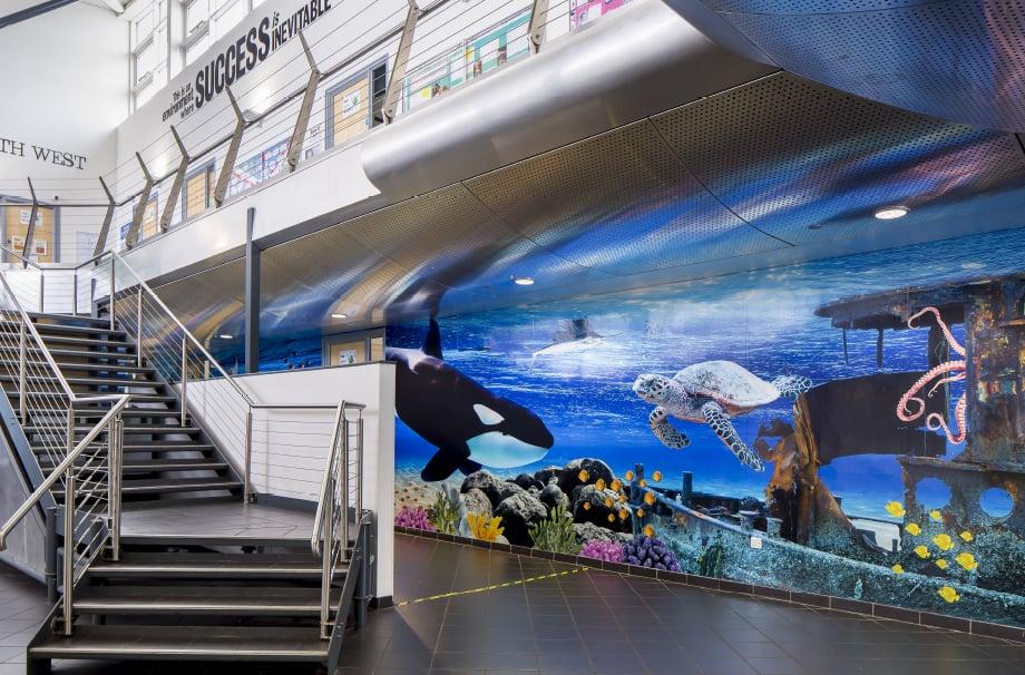 Torquay Academy aquatic bespoke graphic design corridor wall art