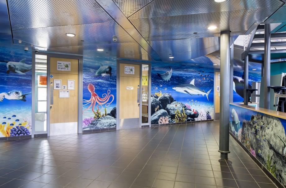 Devon Torquay Academy underwater theme bespoke installation wall art