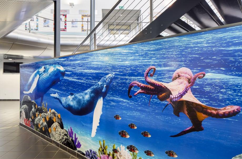 Devon Torquay Academy deep sea themed welcome area reception wall art