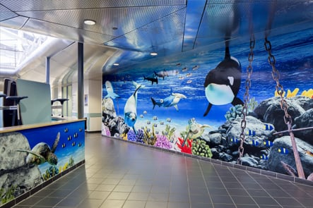 Torquay School aquarium theme corridor wall art