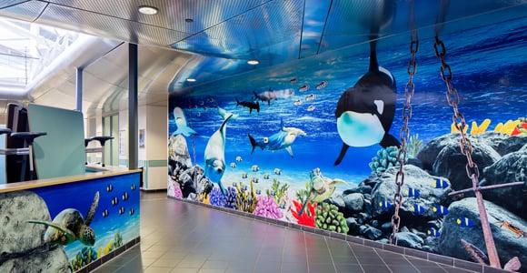 Torquay Academy - Underwater atrium