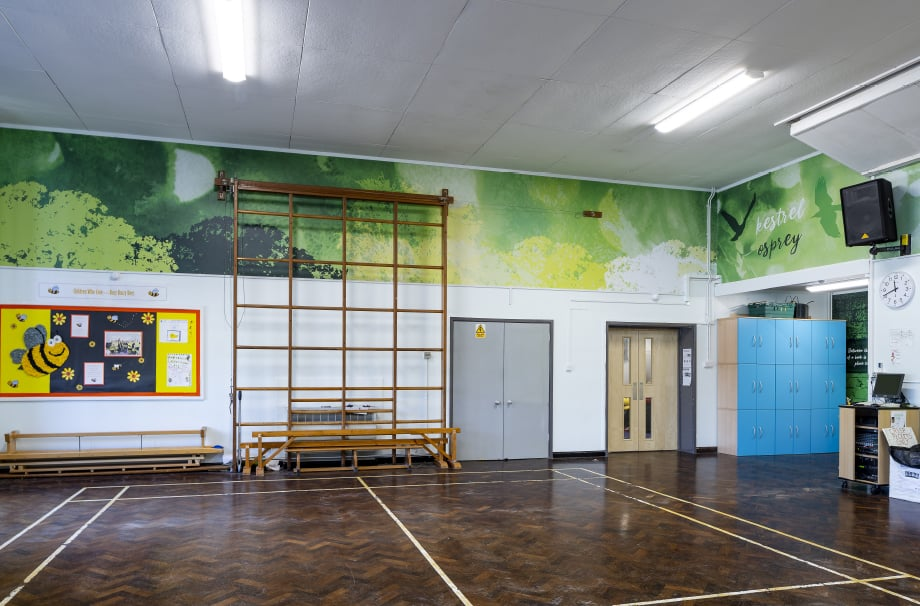 Crofton Anne Dale bespoke theme school hall wall art