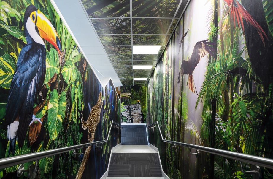 Frederick Bird Primary School rainforest theme stairway wall art