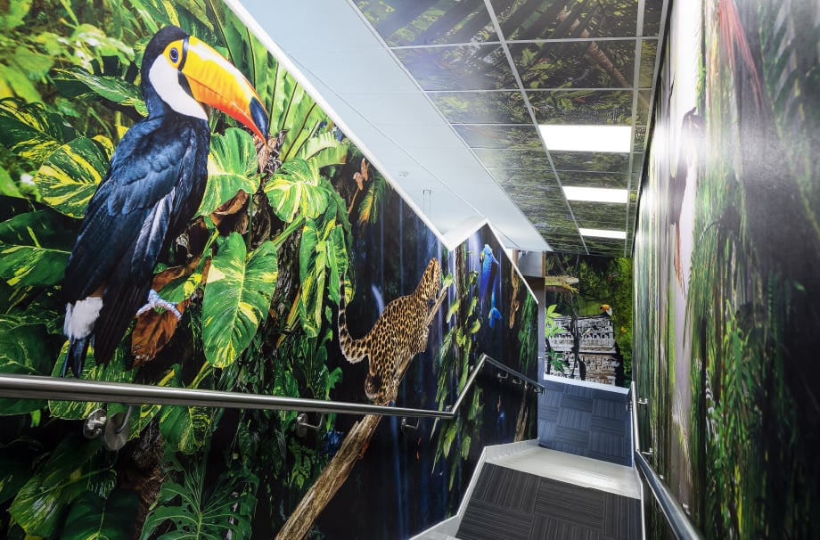 Coventry Primary School rainforest large format stairway wall art