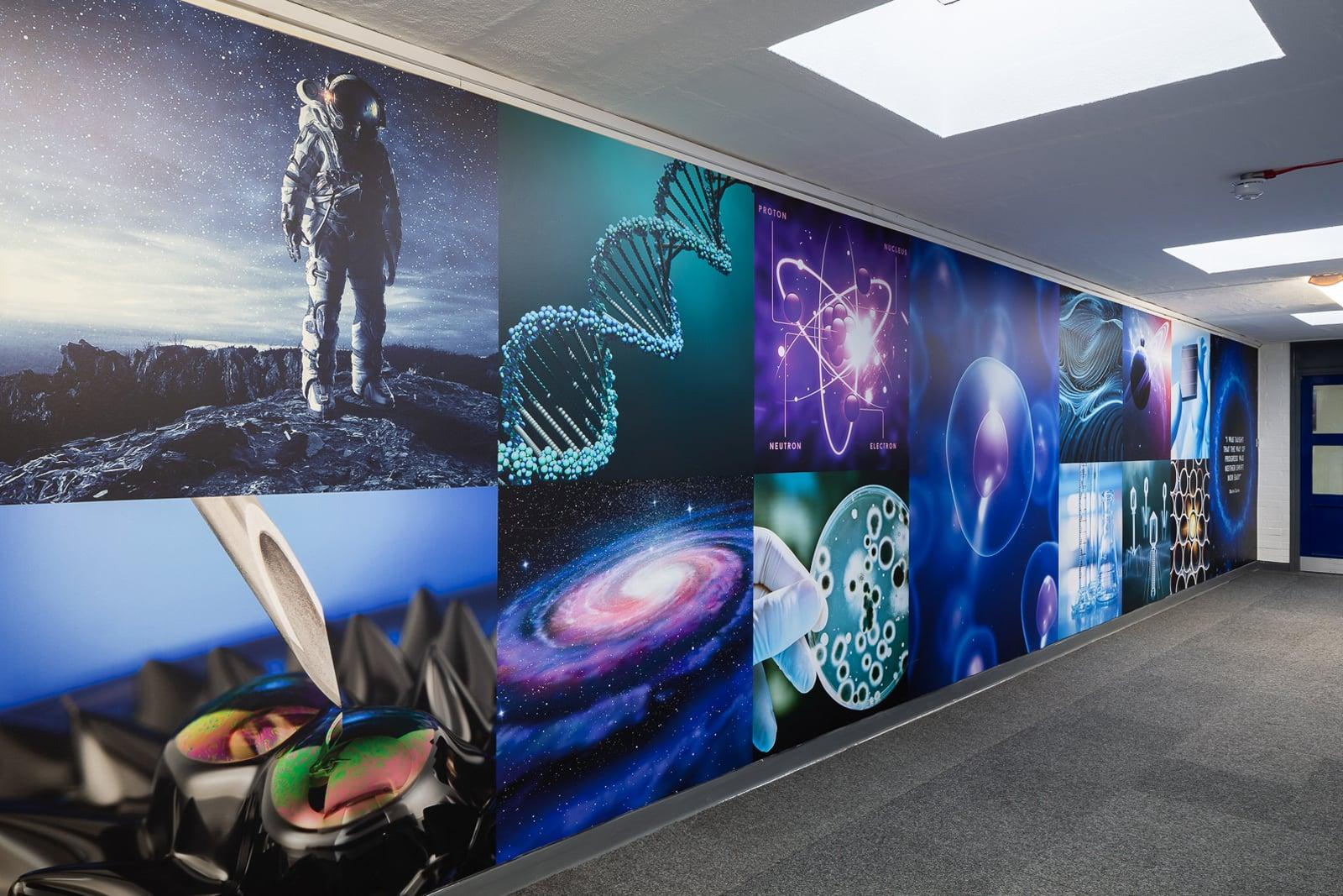 Forest School Science wall art subject themed corridor wrap Wall Art