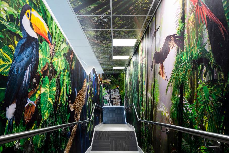 Frederick Bird Primary School - rainforest stairway