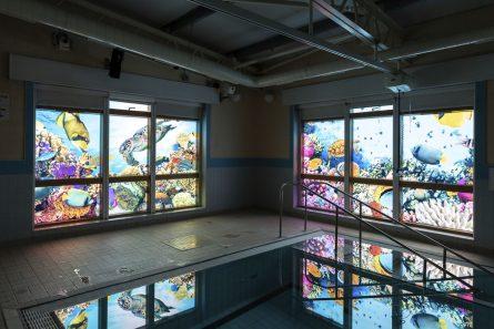 The wyvern pool window vinyl 1